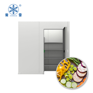 100CBM Cold Room for Fruit And Vegetable