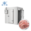 100CBM Cold Room for Frozen Meat, Frozen Fish