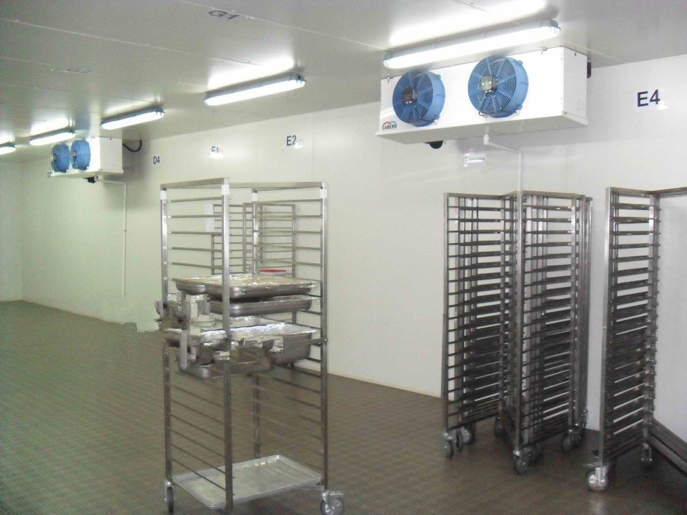 Cold Storage for Chicken And Beef